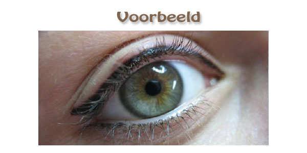 breedeye1